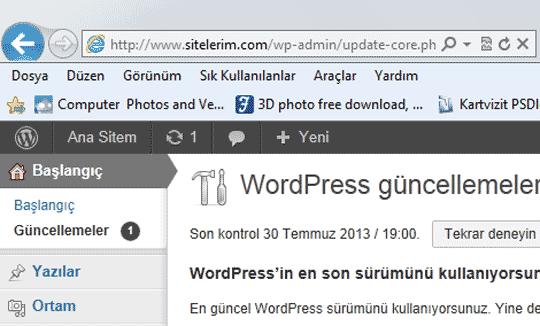 Sanal Sitemdeki WordPress Kurulumu