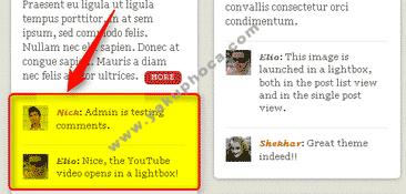 WordPress Ana Sayfada Yazı Yorumlarının Görünümü