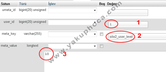 WordPress user_level UserMeta Bilgisini Ekliyoruz